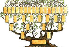 Základy genealogie aneb jak sestavit rodokmen